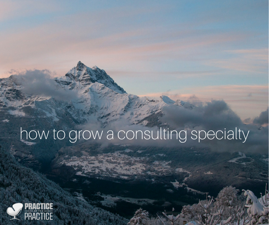 how to grow a consulting specialty