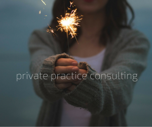 private practice consulting