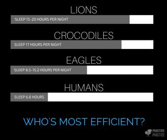 SLEEP AND APEX ANIMALS