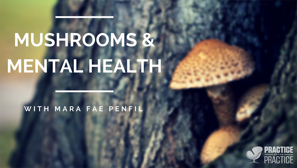 Mushrooms and mental health with Mara Fae Penfil