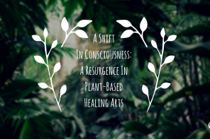 PoP 228 | A Shift In Consciousness: A Resurgence In Plant-Based Healing Arts