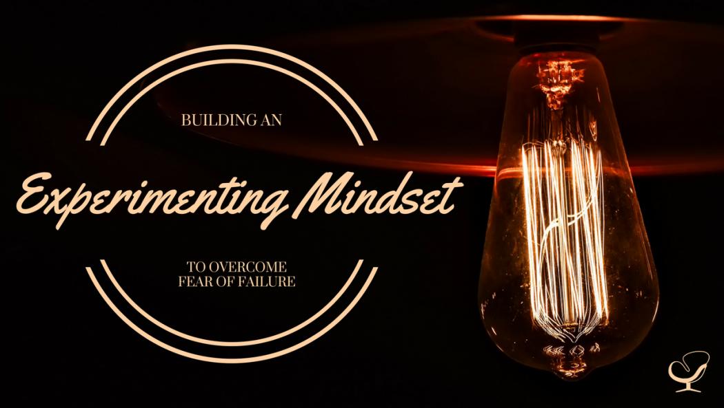 Experimenting mindset