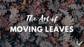 The art of moving leaves