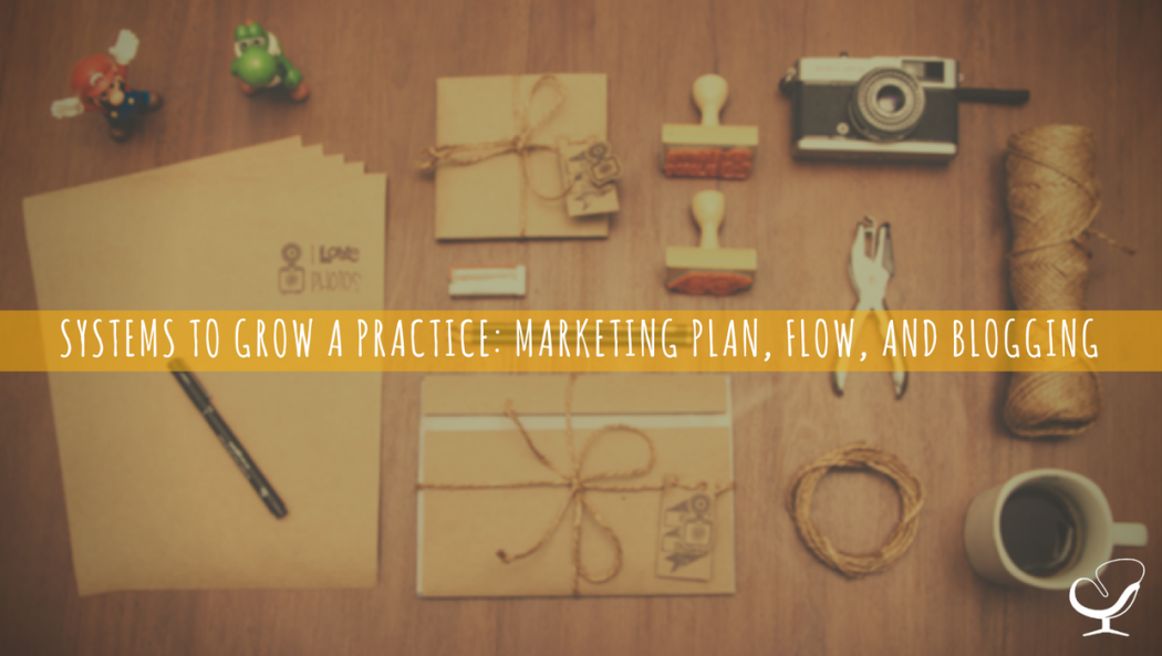 Systems to Grow a Practice: Marketing Plan, Flow, and Blogging