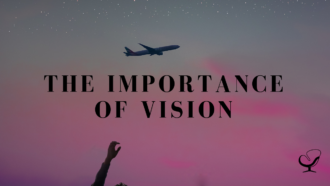 The Importance of Vision
