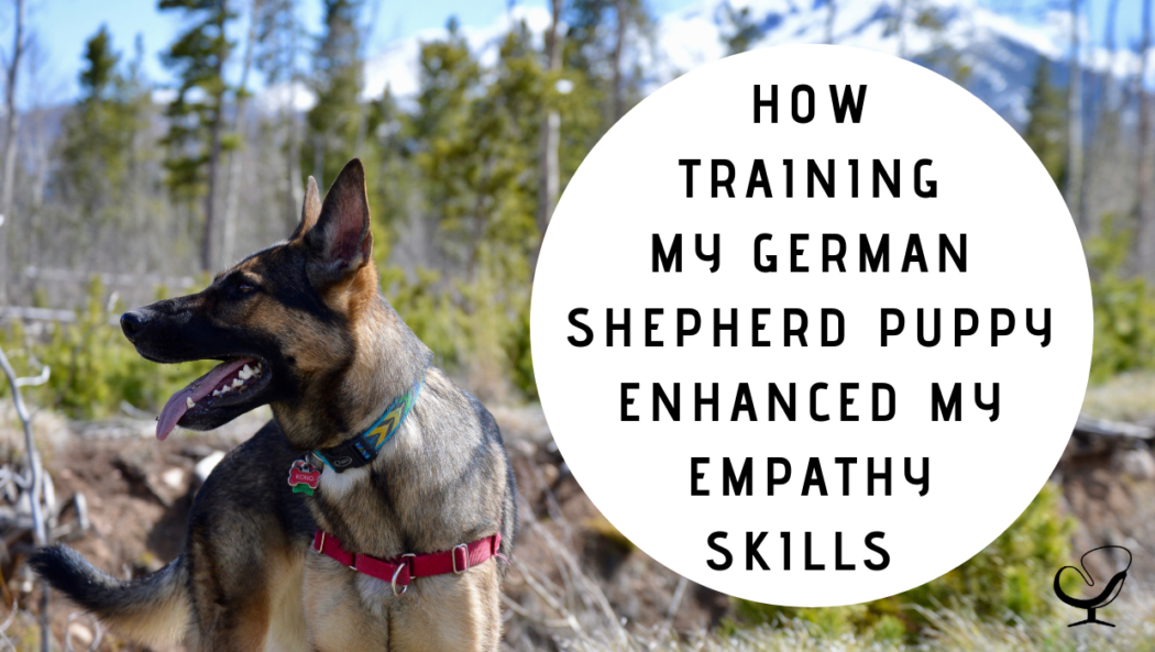 How Training My German Shepherd Puppy Enhanced My Empathy Skills