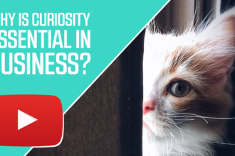 Why is Curiosity Essential in Business?