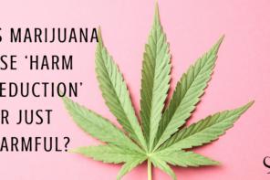 Is Marijuana Use 'Harm Reduction' or Just Harmful?
